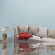 floodrestoration-1114x114
